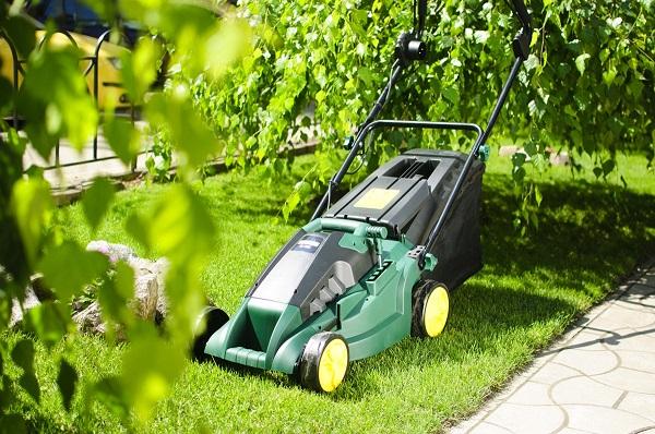Скошенную газонную траву перед наступлением зимы необходимо убрать