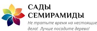 Семена Семирамиды Интернет Магазин