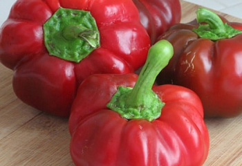 Перец сладкий ( Sweet pepper) Topepo Rosso Pepper F1