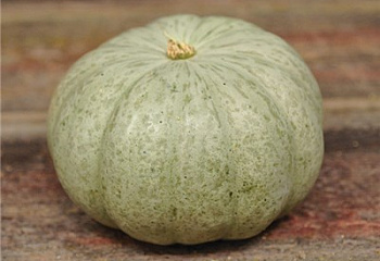 Тыква Squash Sweet Meat Winter Squash