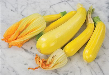 Кабачок Marrow squash Zucchini Golden