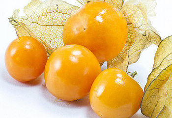 Физалис Golden Berry Gigante